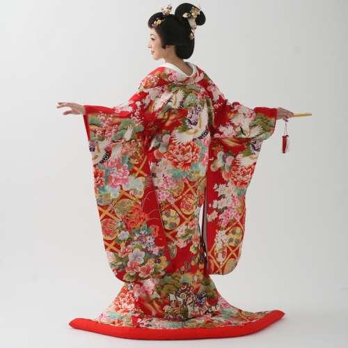 白花菱 鶴・菊・橘・亀甲文