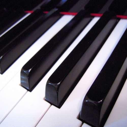 ピアノ使用料(OP)