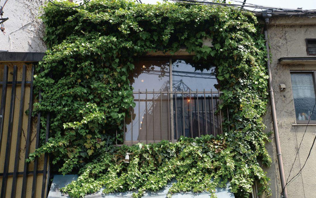 町をキーワードヒントに撮る「窓」