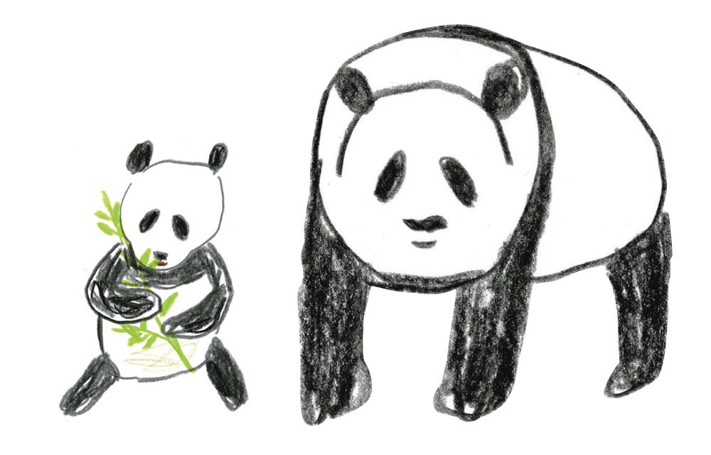 ジャイアントパンダを描いてみよう!