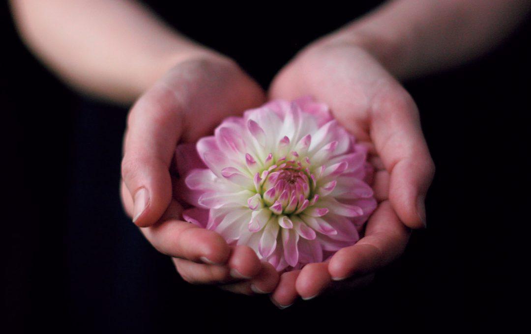 手と花を組み合わせることでストーリーを生み出す