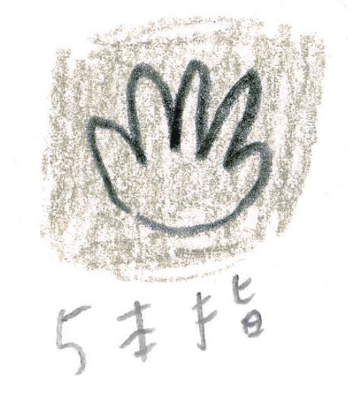 ミヤタチカ-アライグマ03