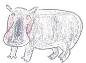 ミヤタチカのお絵描き動物園-第8回カバDrawing08