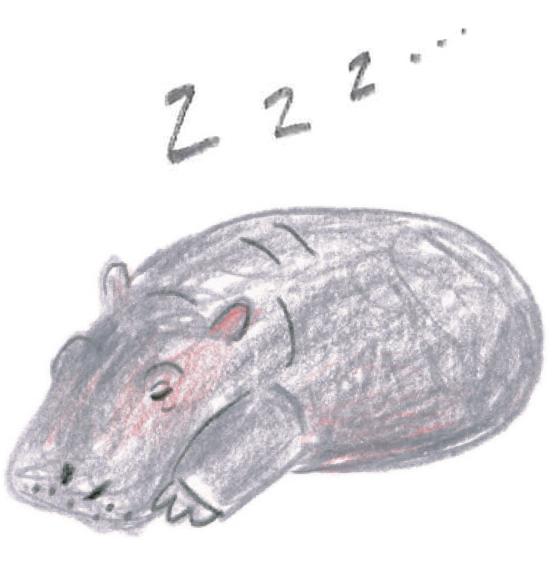 ミヤタチカのお絵描き動物園-第8回カバ05
