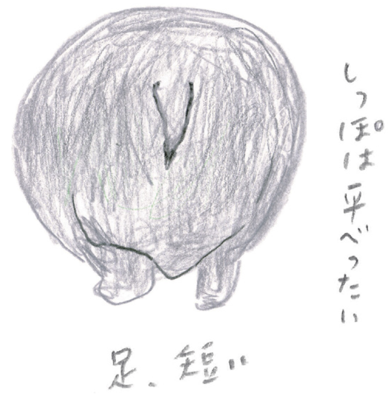 ミヤタチカのお絵描き動物園-第8回カバ03