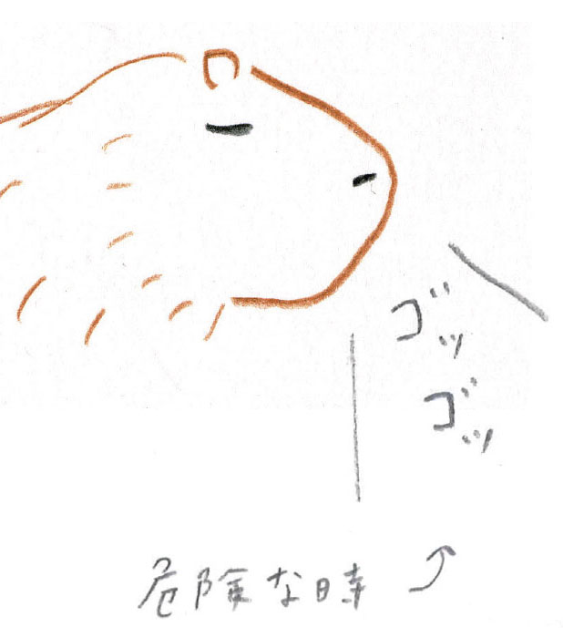 ミヤタチカ-第10回-06