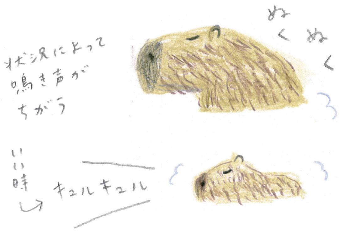 ミヤタチカ-第10回-05