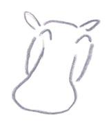 ミヤタチカのお絵描き動物園-第8回カバDrawing03
