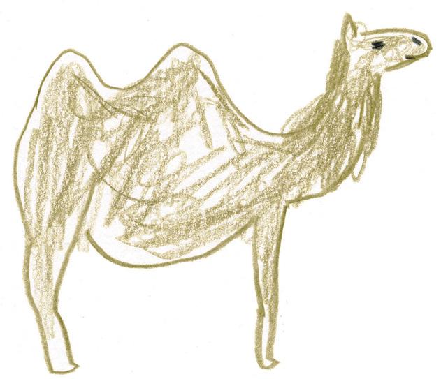 砂漠の人気者、ラクダを描いてみよう!