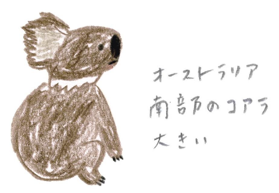 ミヤタチカ-11-コアラ-04