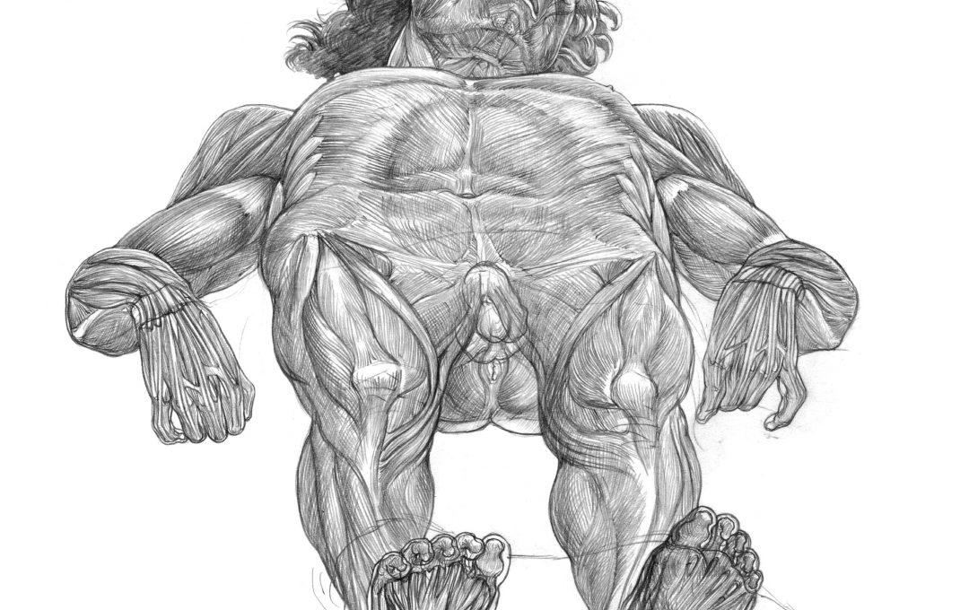 マンテーニャの名作「死せるキリスト」の美術解剖図