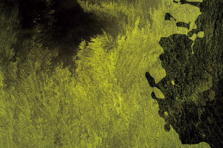 石井靖久写真展「細胞の海、神経の森」