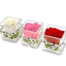 201 rose cube 01