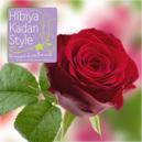 Hibiya rose