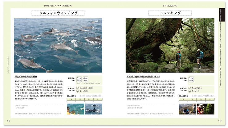 Green catalog sample 2
