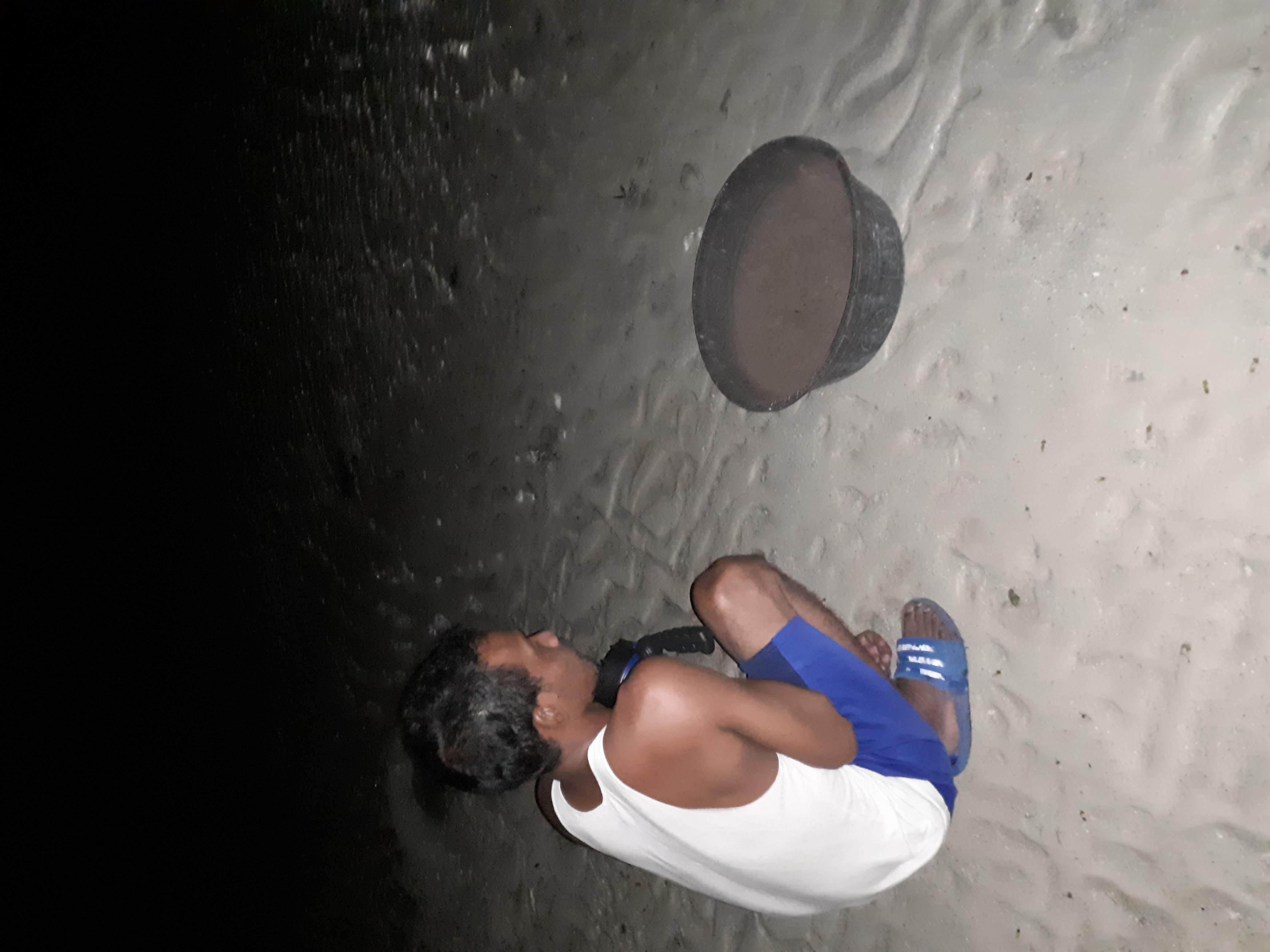 建物の明かりによって迷子になった赤ちゃんガメを海に帰す常駐監視員