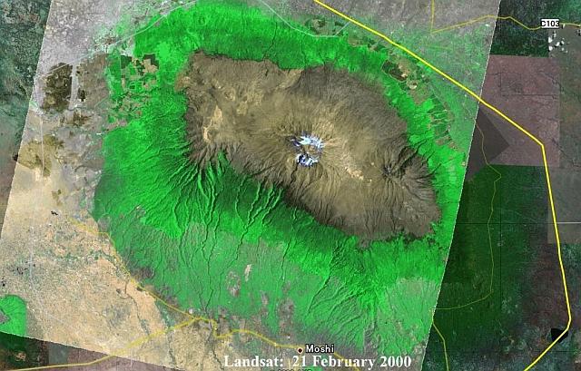 衛星画像によるキリマンジャロ山と森の様子