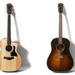 02_guitar1_12kage