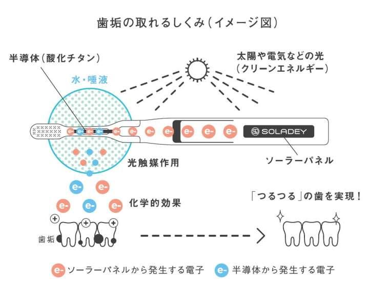 【提供】リリース1P目の図
