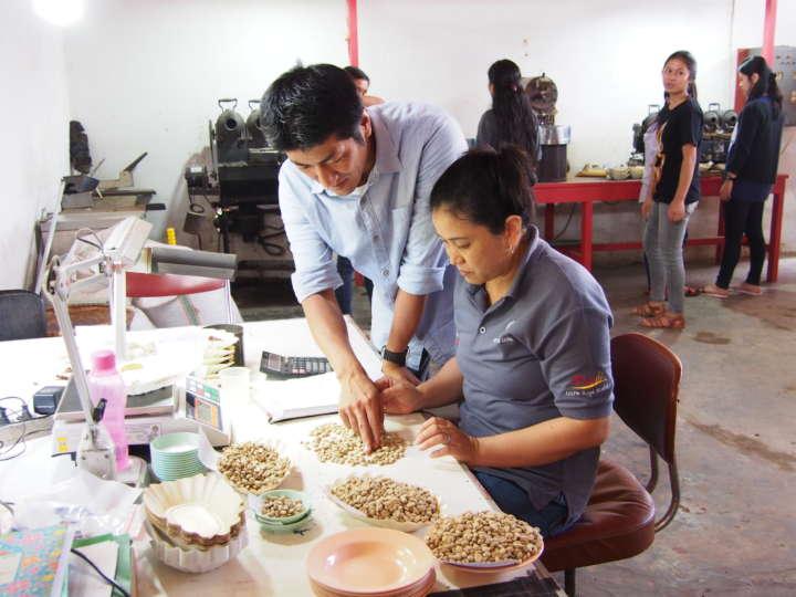 コーヒー豆の品質管理担当者を指導する吉原さん