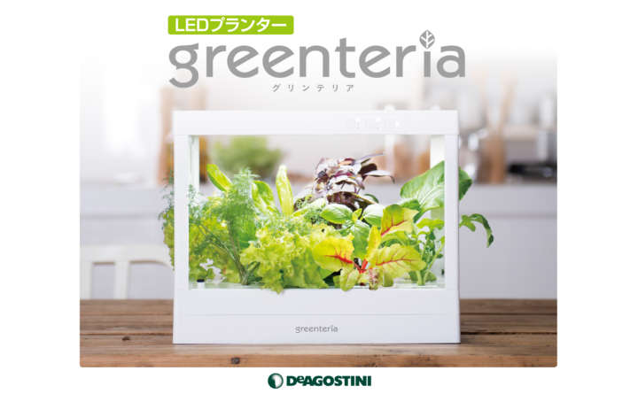 greenteria_BOX01_v3.indd