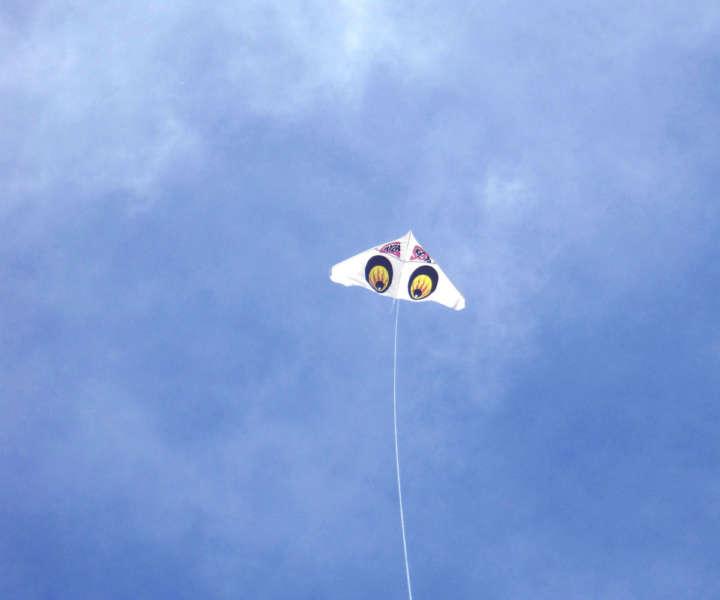 凧揚げ界の革命児!飛び過ぎる凧「ゲイラカイト」は今も売っていた ...