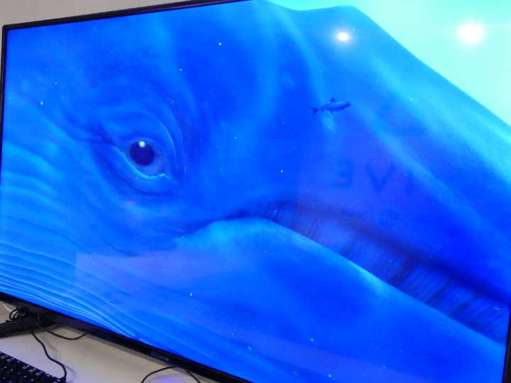 ▲確かにモニターには巨大なクジラが。これが超リアルに迫ってきます