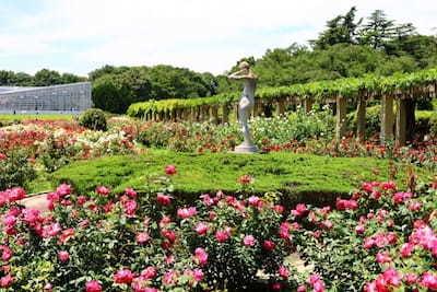 神代植物公園ガイドツアー