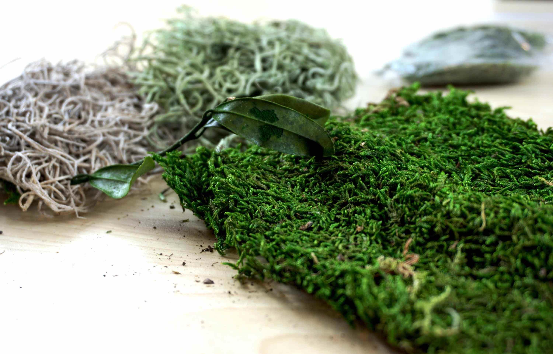 GREEN ART KIT ICE CREAM