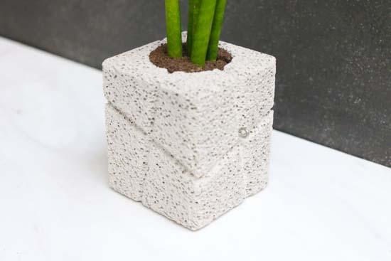 CHOKOTTO(ちょこっと)/ クロスライン S/観葉植物