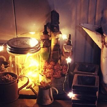 JUNK鉢の画像