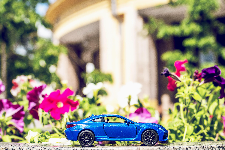 車と花イメージ写真
