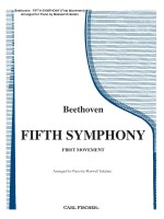 Fifth Symphony (First Movement)