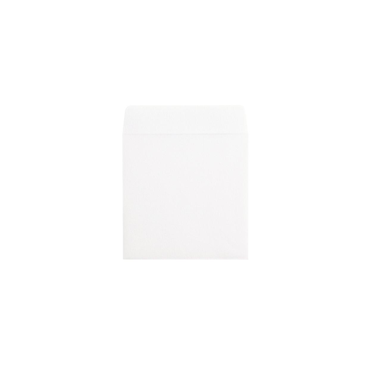 のし袋 中 コットン スノーホワイト 116.3g