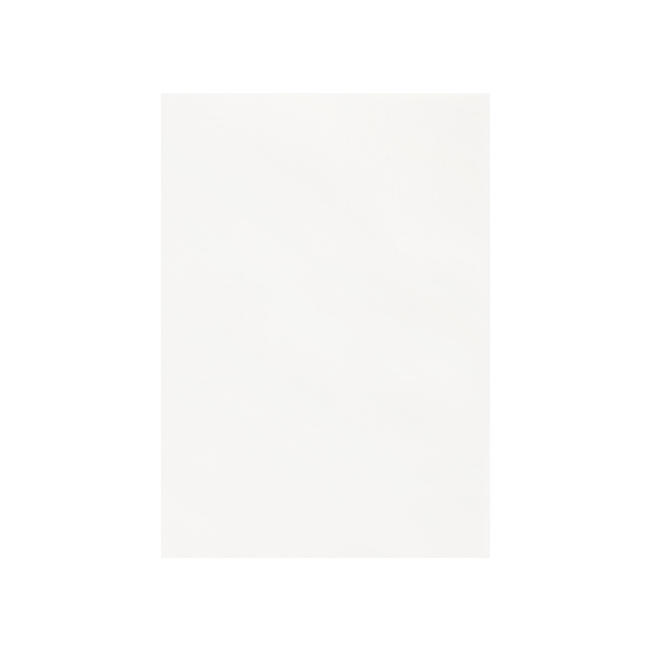 Pカード コンケラー レイド ブリリアントホワイト 220g