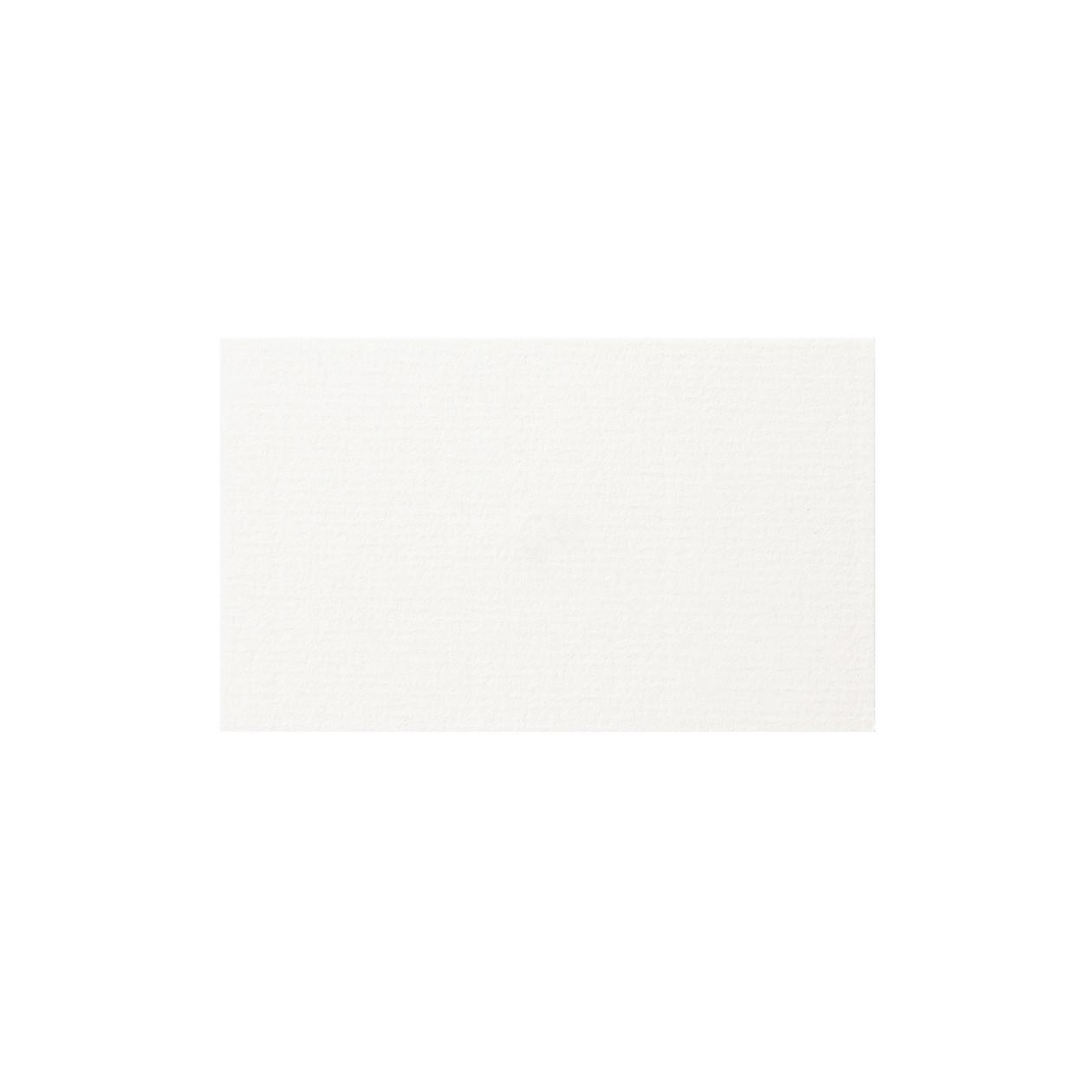 ネームカード コンケラー レイド ブリリアントホワイト 220g
