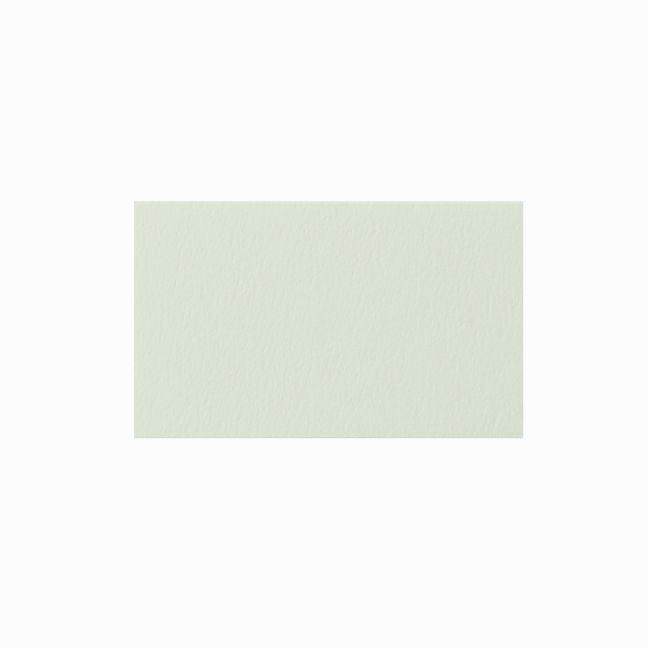 ネームカード ニューラグリン ライム 219.8g