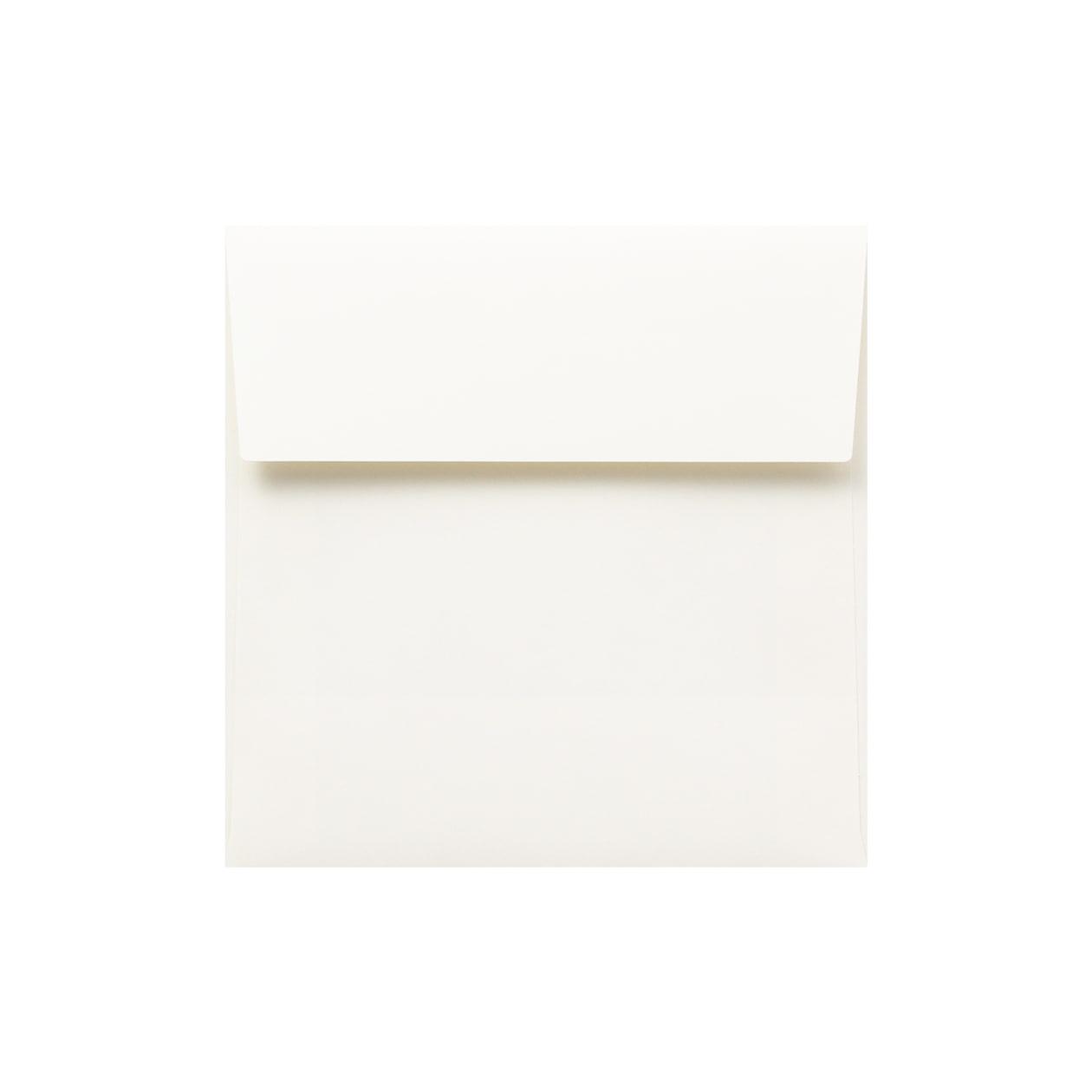 SE16カマス封筒 HAGURUMA Basic ソフトクリーム 100g