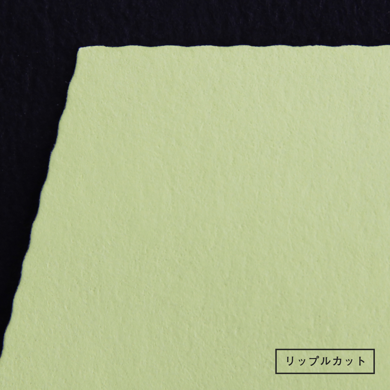 長3封筒 エコフレンドリーカラー リーフグリーン 100g