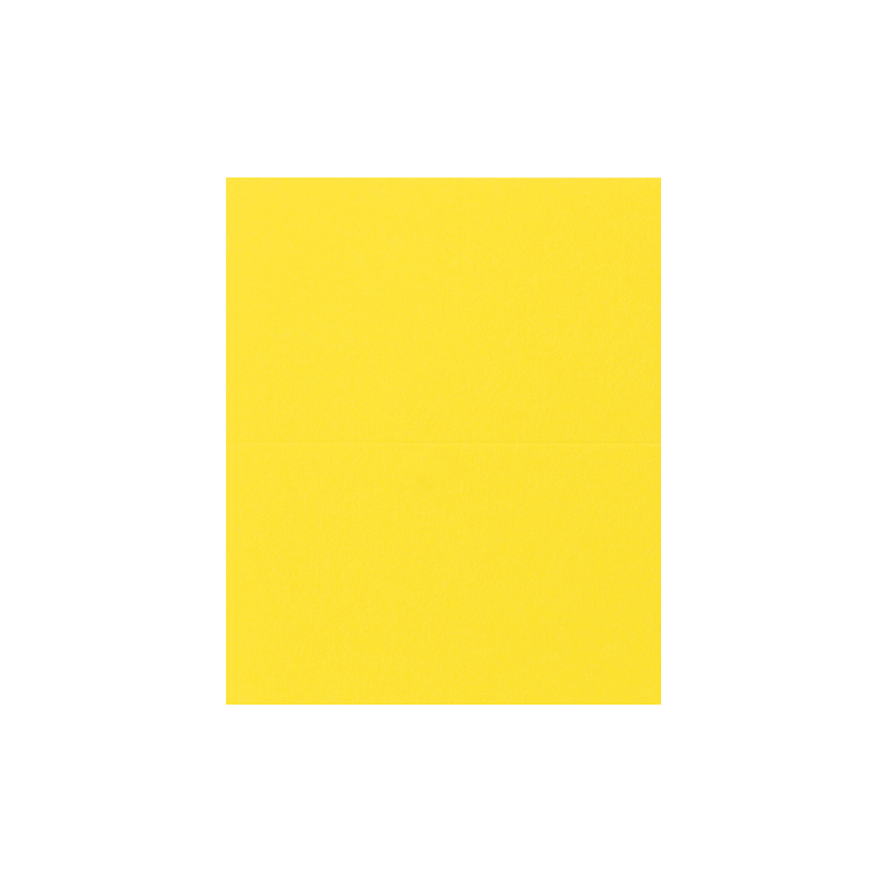 #24Vカード コットン(NTラシャ) ひまわり 151.2g