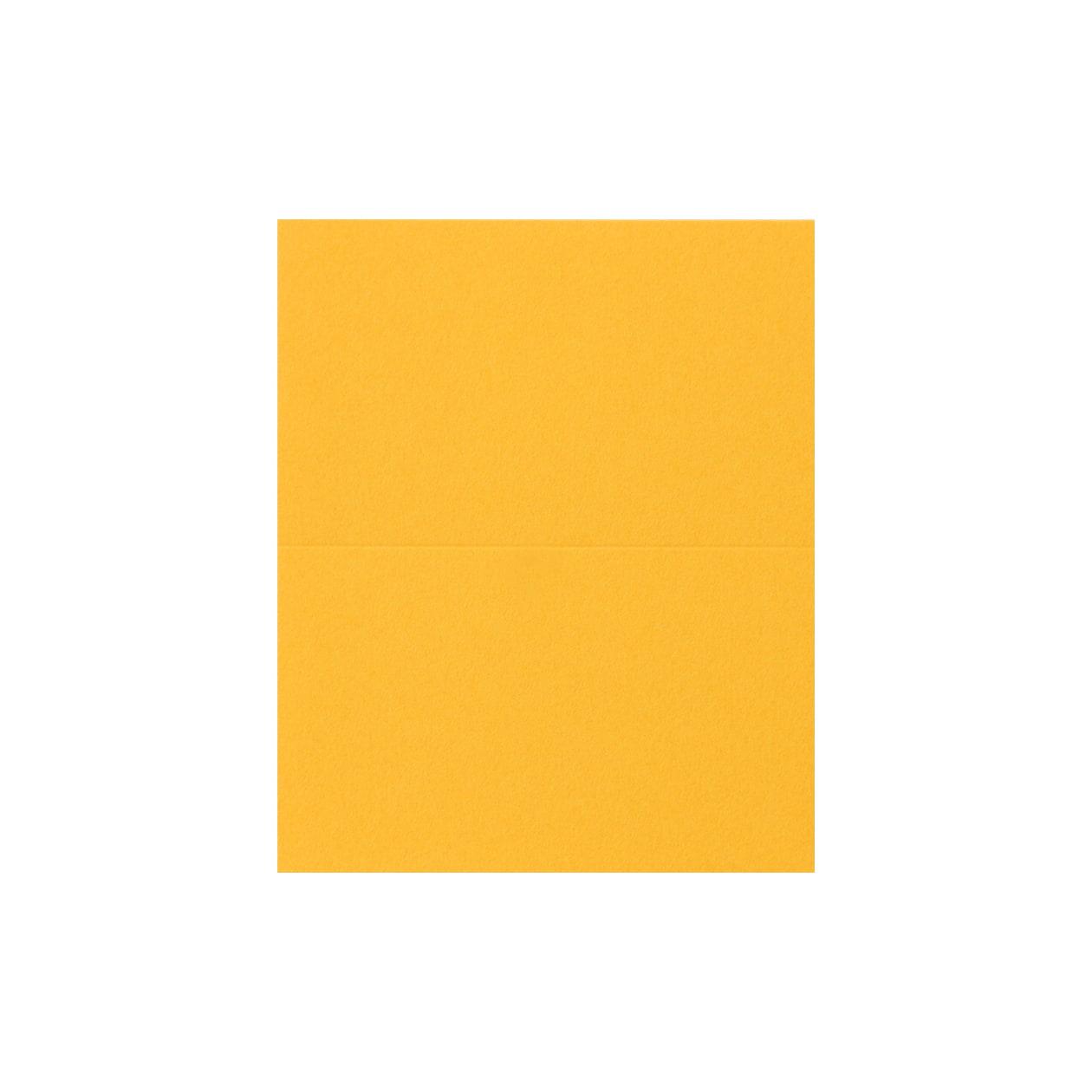 #24Vカード コットン(NTラシャ) 山吹 151.2g