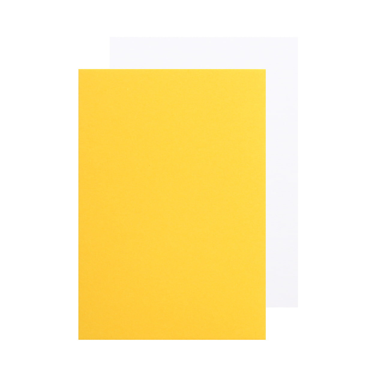 Pカード 二層合紙 黄色×スノーホワイト 477.1g