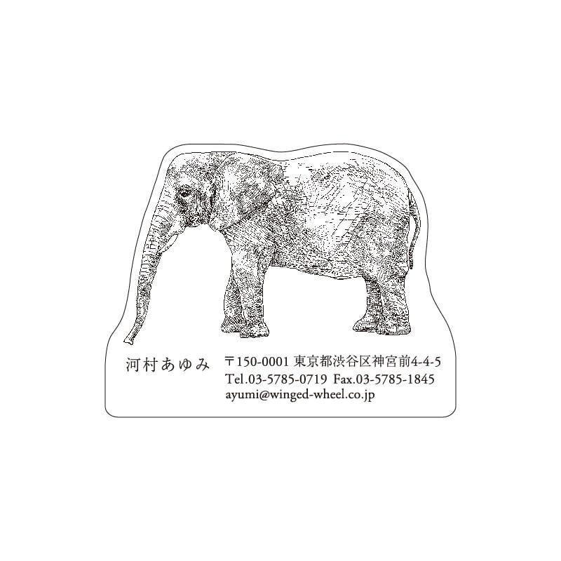 No.602 ゾウ ネームカードDC