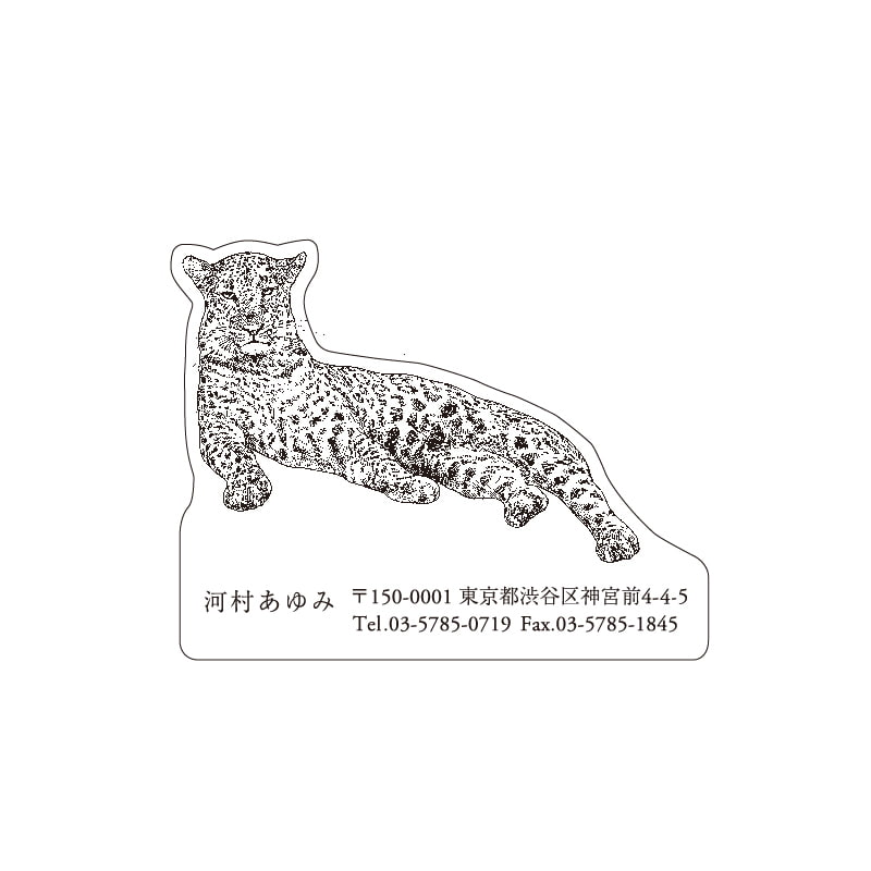 No.602 ヒョウ ネームカードDC