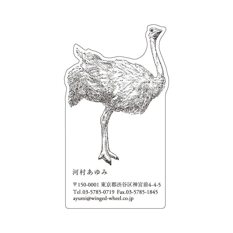No.602 ダチョウ ネームカードDC