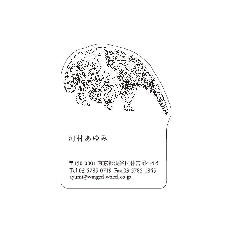 No.602 アリクイ ネームカードDC