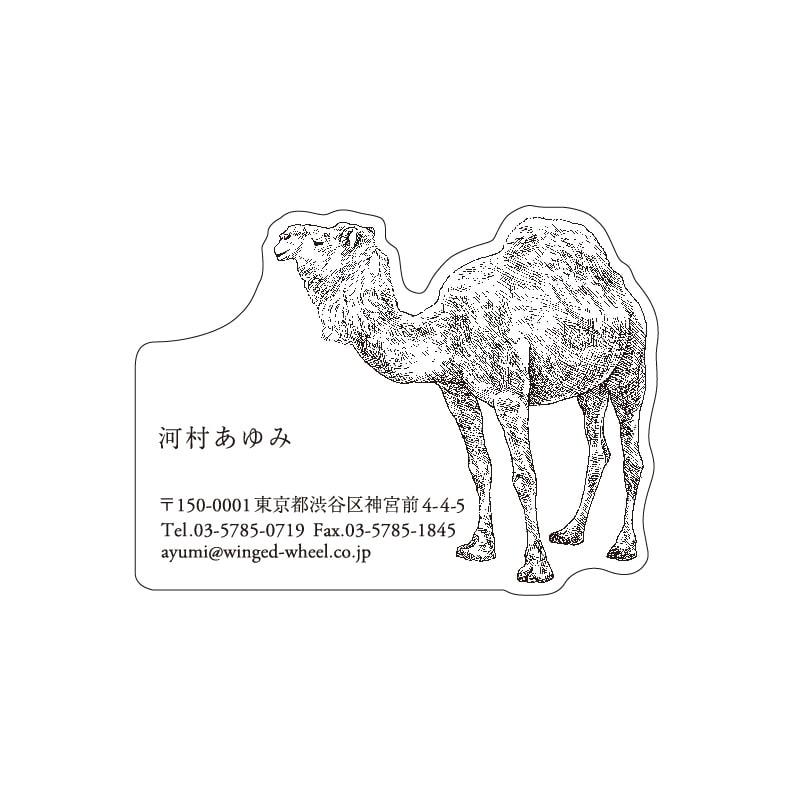 No.602 ラクダ ネームカードDC