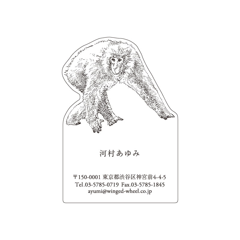 No.602 サル ネームカードDC