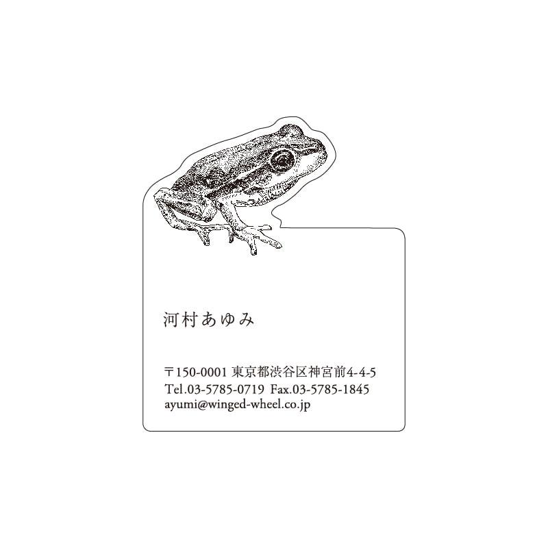 No.602 カエル ネームカードDC