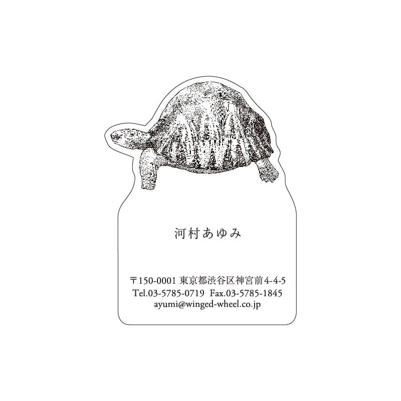 No.602 カメ ネームカードDC